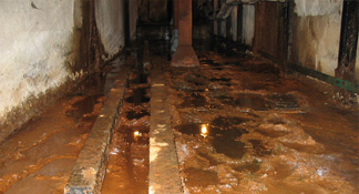 Tunnel Excavation and Cleaning